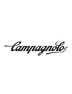 Vevlager Madone Campa Kit