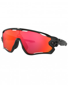 Glasögon Oakley Jawbreaker Matte Black Prizm Trail