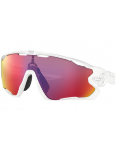 Glasögon Oakley Jawbreaker Polished White Prizm Road
