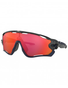 Glasögon Oakley Jawbreaker Carbon Prizm Trail