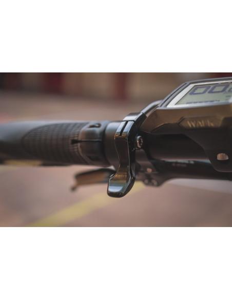 Cykel Cannondale Adventure Neo 2 EQ, Sage Gray