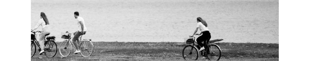 Upptäck vårt breda sortiment av  Skeppshult cyklar | I alla prisklasser!
